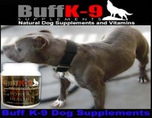 pitbull vitamins top quality muscle
