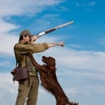 Hunter training hunting dog