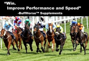 horese racing supplements speed recovery
