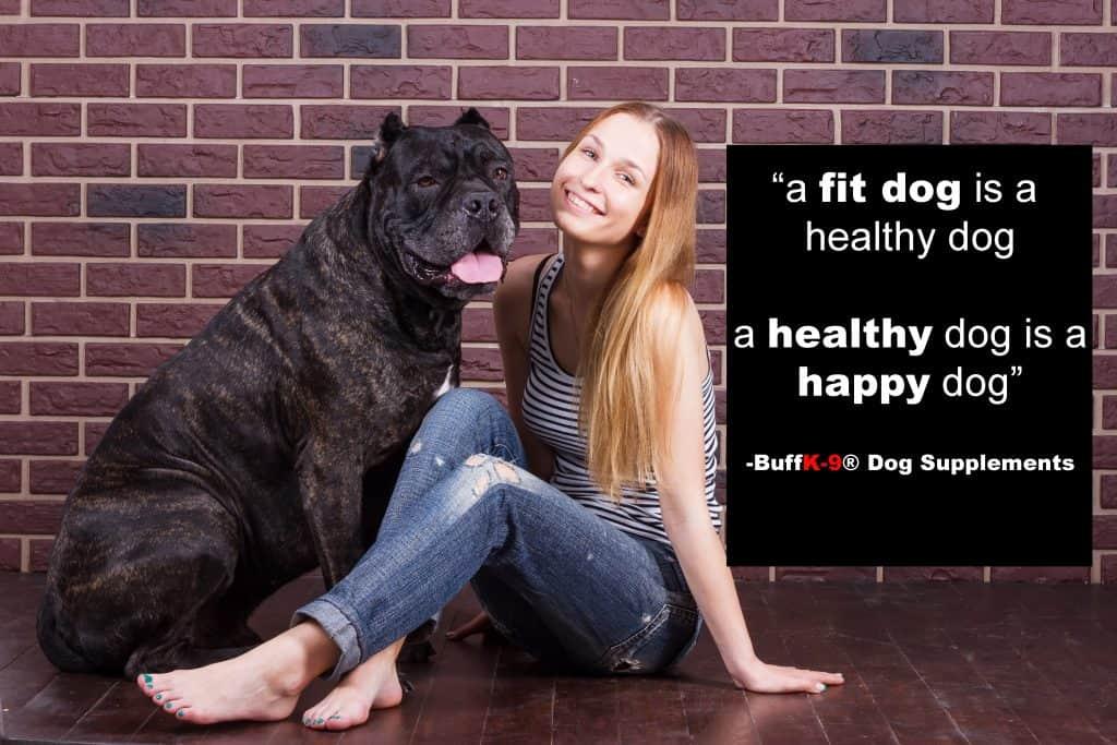 dog fitness training equipment buffk9 supplement vitamins