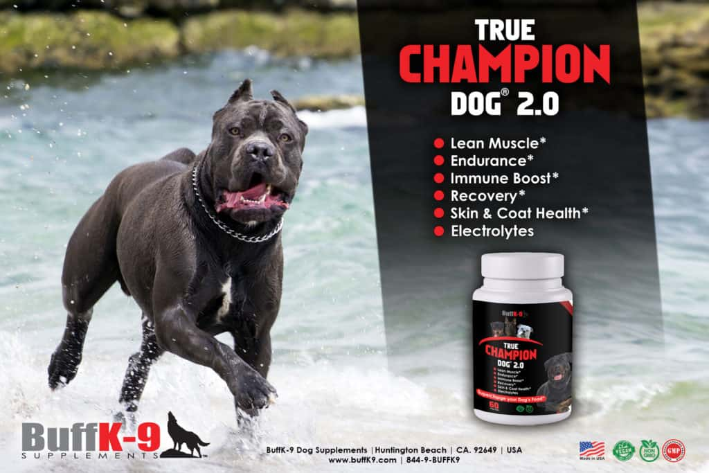 true hcampion dog supplement muscle stress immune health